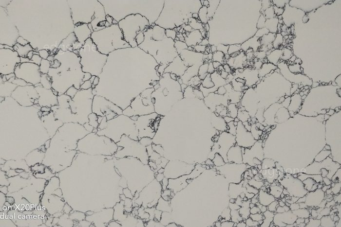 Calacatta White Quartz 6009